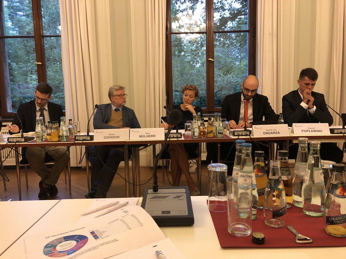 Die Wahlen im Europaparlament 2019 – eine Zusammenarbeit zwischen dem DGAP und dem Institut der Freiheit