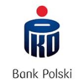 Partner Wspomagający Logo